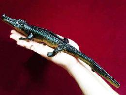 Крокодил заводной (33 см)
