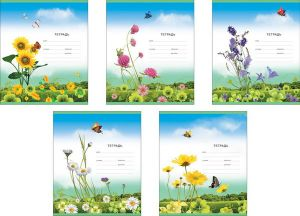 Тетрадь ЛИНЕЙКА Луговые цветы (12л)
