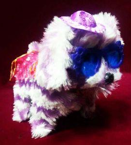 Собачка Авва в очках (тяфкает, ходит)